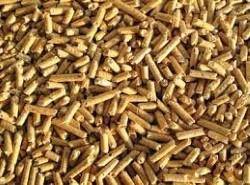 biomassa-caldeira-polisol-250x185